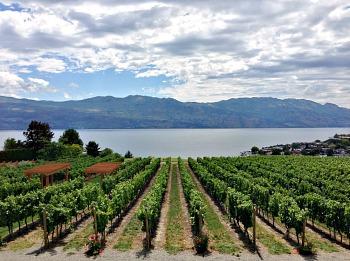 BC Wine Country, Kelowna BC
