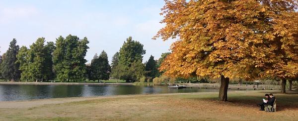 Romantic Green Lake Park, Seattle
