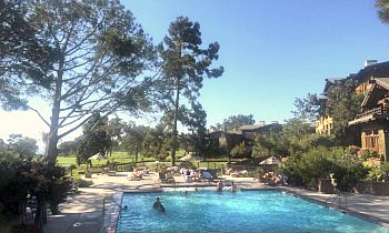 Pool at the Lodge at Torrey Pines