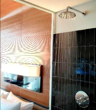NYC Hotel Bathroom Rain Shower