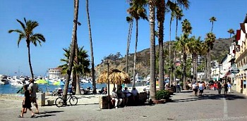 Relaxing Catalina Island