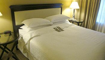 Sheraton Fort Lauderdale King Bed