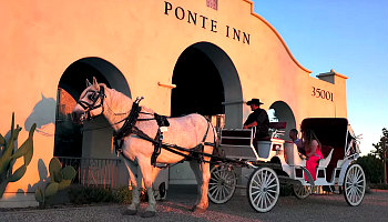 Temecula CA Horse Drawn Carriage Ride