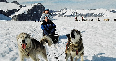 Newlyweds on a Dogsled Ride in Alaska