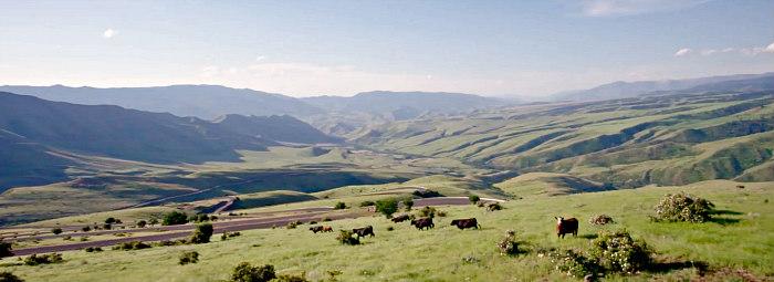 North Idaho Scenery