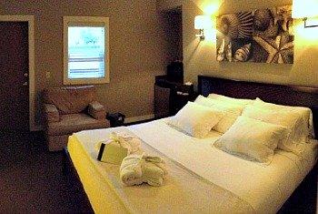 Bird Rock Hotel Room