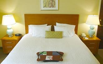 Hampton Milwaukee King Suite