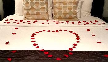 Romantic Rose Petals - Ohio Hotel